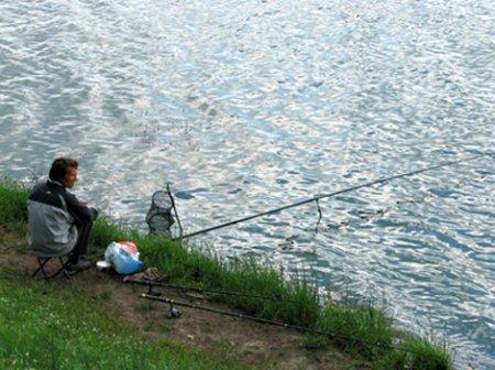 Ловля маховым удилищем на реке
