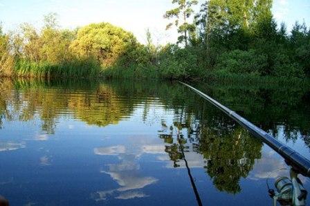 Ловля леща на озере
