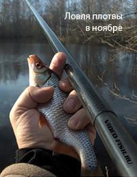 ловля в конце ноября