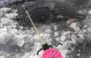 Ловля плотвы зимой на поплавочную снасть