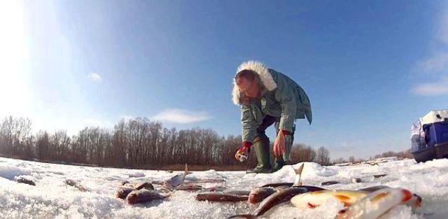 Схема оснастки зимнего покатка по большей части не отличается от схем, предназначенных для ловли в другое время года