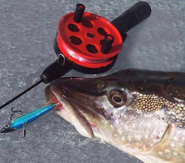 Если заметили лунки, которые остались после других рыбаков, и они не замерзли из-за оттепели, есть вероятность поймать щуку, так как возле такой лунки собирается малек