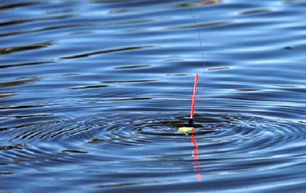При ловле на поплавочные удочки необходимо использовать прикормку. Выбирая маховую или болонскую удочку, отдайте предпочтение поплавкам, которые обладают устойчивостью и могут противостоять силе течения