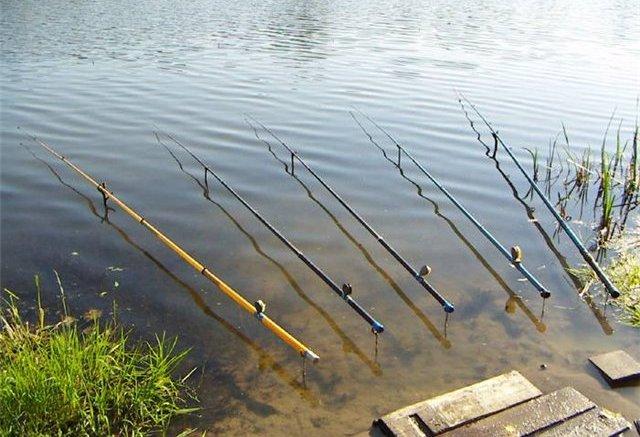 Ловля красноперки на поплавочную удочку осуществляется при помощи трех оснасток. Между собой они отличаются по форме, огрузке и другим параметрам