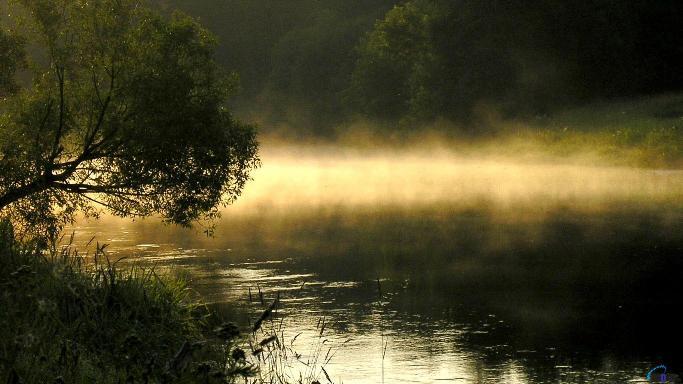 Приехали рано, солнце едва показало свои первые лучики. Вода остывала, выдыхая из себя пары утреннего тумана