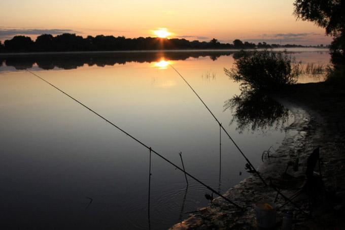 Угорь – рыба, которая ведет преимущественно ночной образ жизни, поэтому ловить его необходимо в ночное время суток