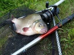 Рыбалка – это не просто увлечение, но и стиль жизни