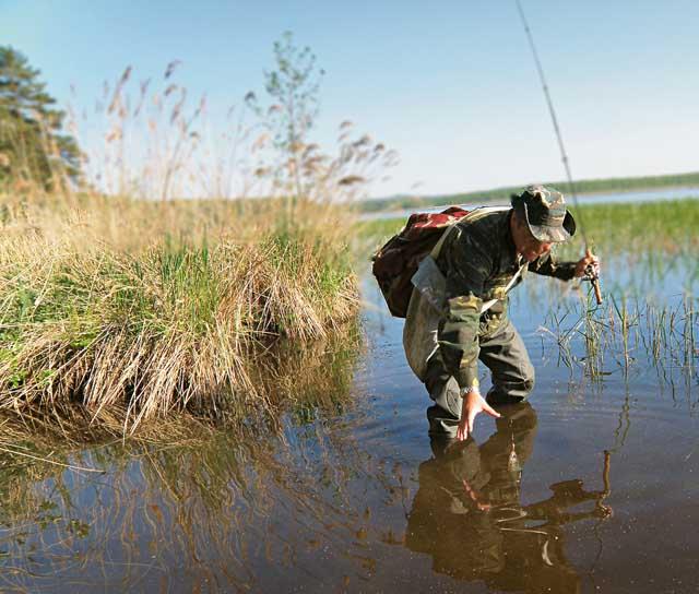 Главное условие для хорошей ловли в июне – правильно выбранный участок
