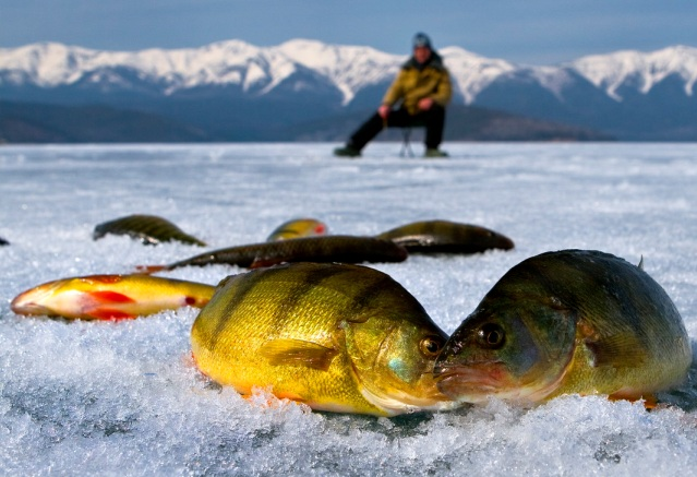 Использование специального термобелья – залог успешной рыбалки