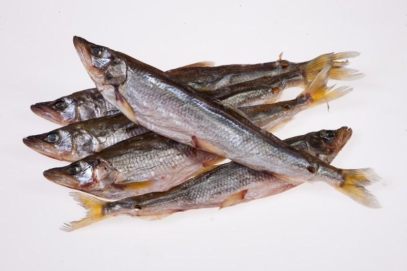 рыба вместе