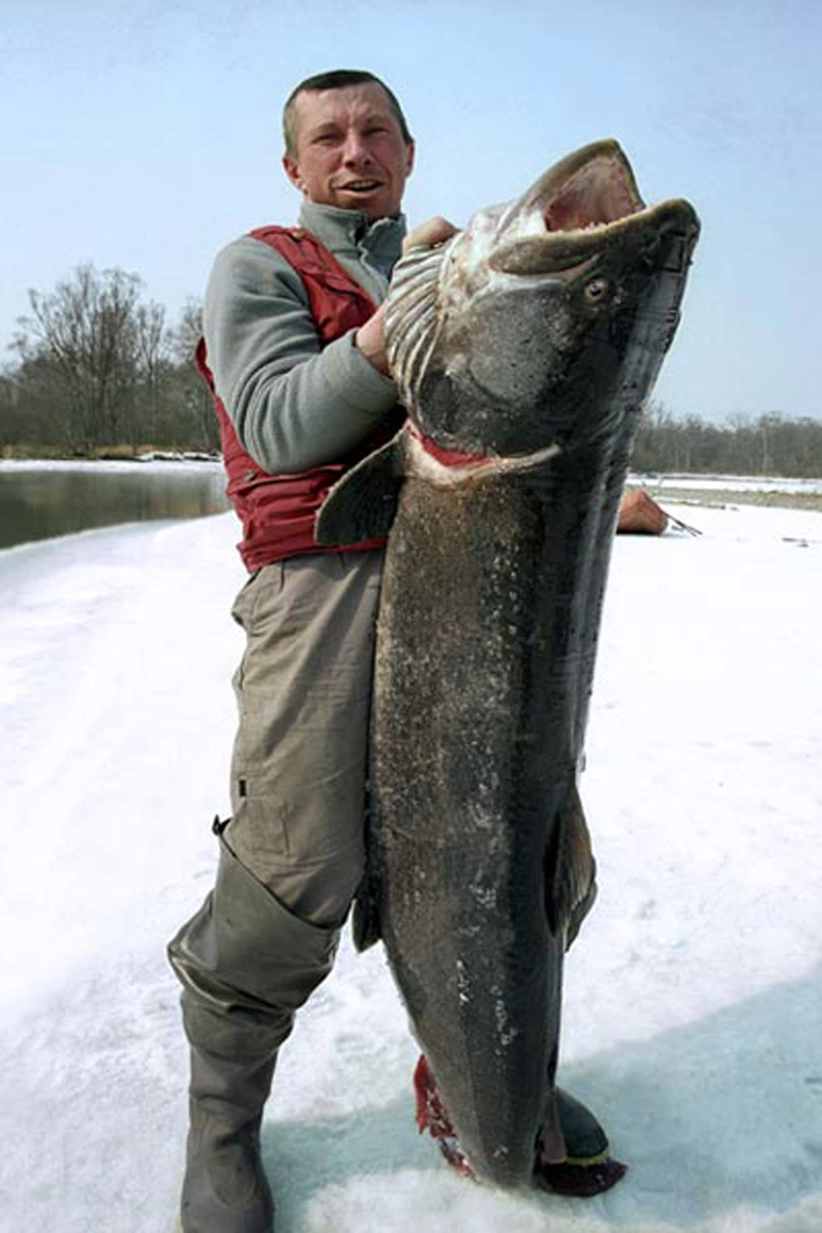 таймень и рыбак