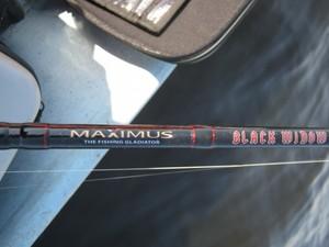 Все о спиннинге Maximus Black Widow