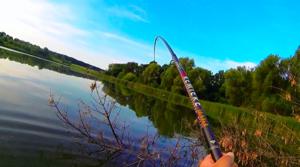 Некоторые рыбаки предпочитают ловлю карпа на удочку всем другим способам