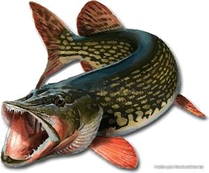 Поводки для рыбалки своими руками