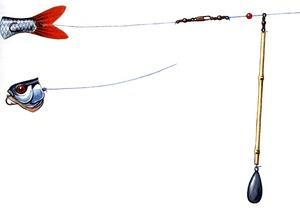 Какие снатси нужны для ловли судака