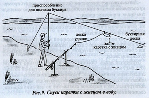 Правила ловли судака