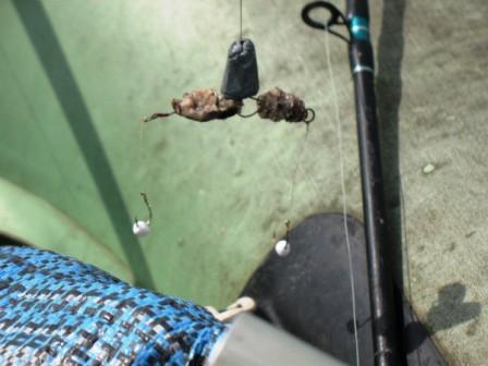 Ловля леща на пенопласт и пенопластовые шарики