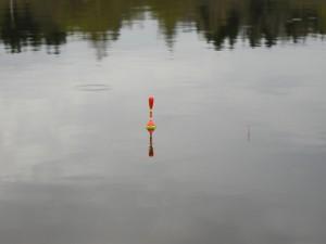 Правильно огруженный поплавок, покажет даже самую деликатную поклевку