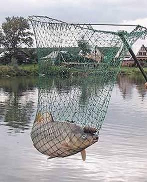 Подсачек необходим для того, чтобы при вываживании улов не сорвался и не уплыл